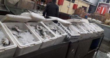 أسعار الأسماك اليوم بسوق العبور