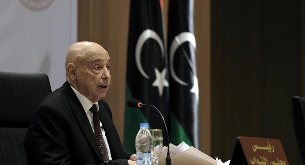 رئيس البرلمان الليبي: سنستعين بـ مصر حال التدخل التركي وإرسال قوات عسكرية