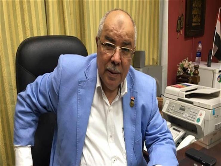 النائب إسماعيل نصر الدين: قاعدة برنيس مهامها حماية السواحل المصرية الجنوبية