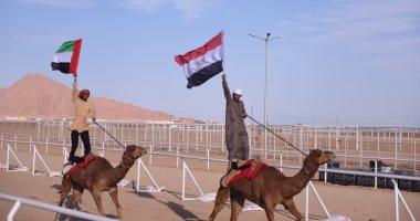 مدينة شرم الشيخ تستضيف أكبر حدث تراثى عربي