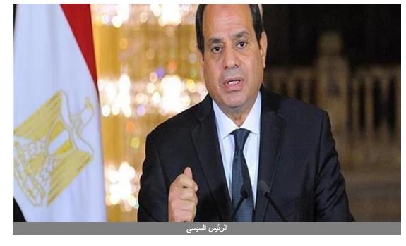 برلمانية: أؤيد تفويض الرئيس للحفاظ على الأمن القومي المصري