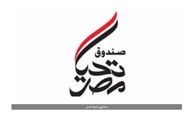 نائب: صندوق تحيا مصر الذراع الأيمن للحكومة في تنفيذ المبادرات لصالح الفئات الأكثر احتياجا